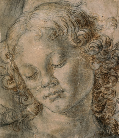 Study for the Head of an Angel Andrea Verrocchio